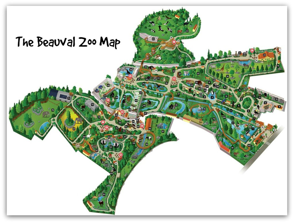 The Beauval Zoo Map
