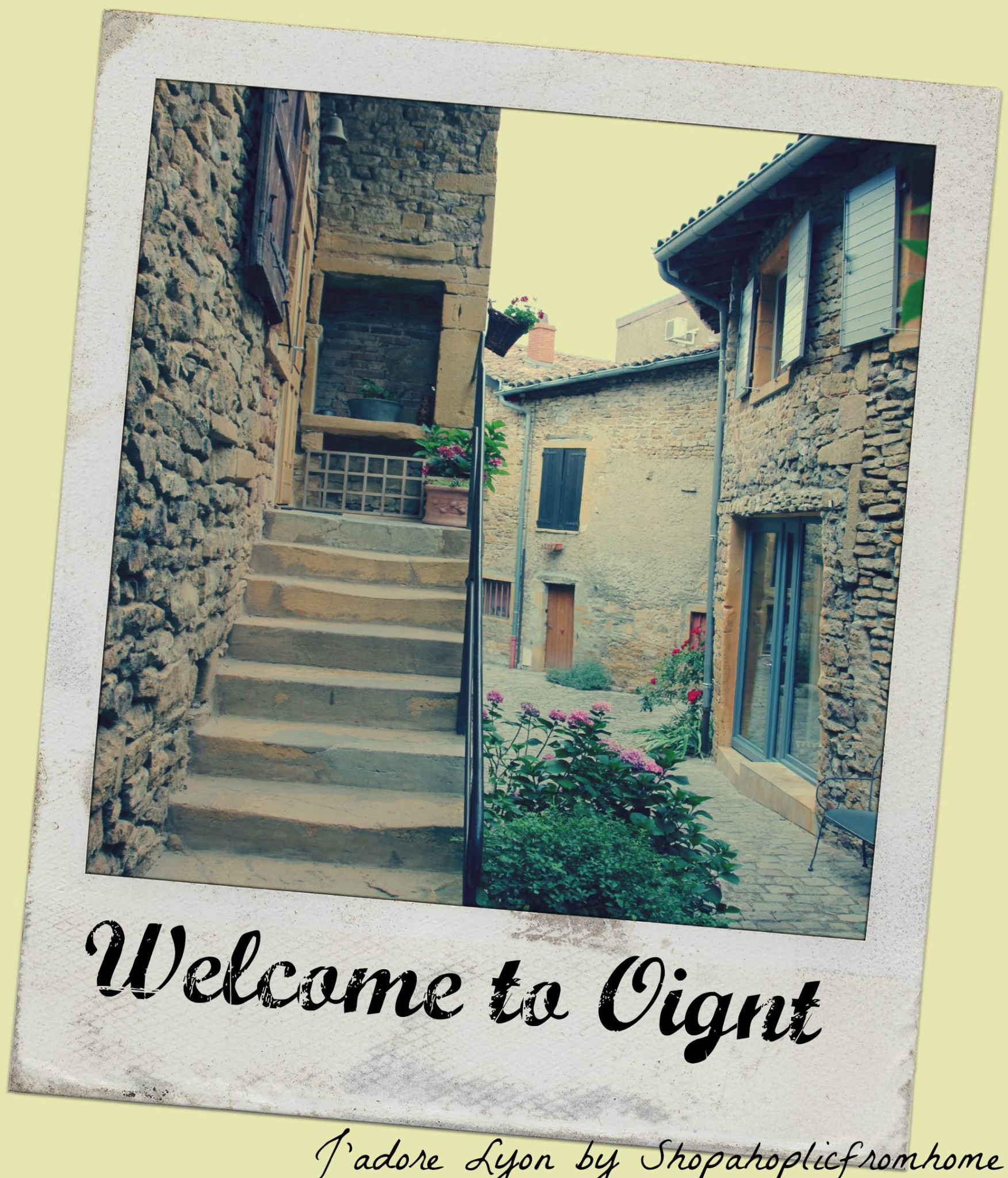 Welcome to Oignt