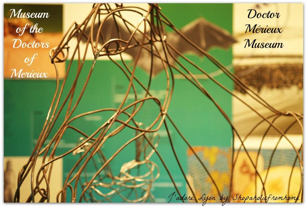 Doctor Merieuxs Museum