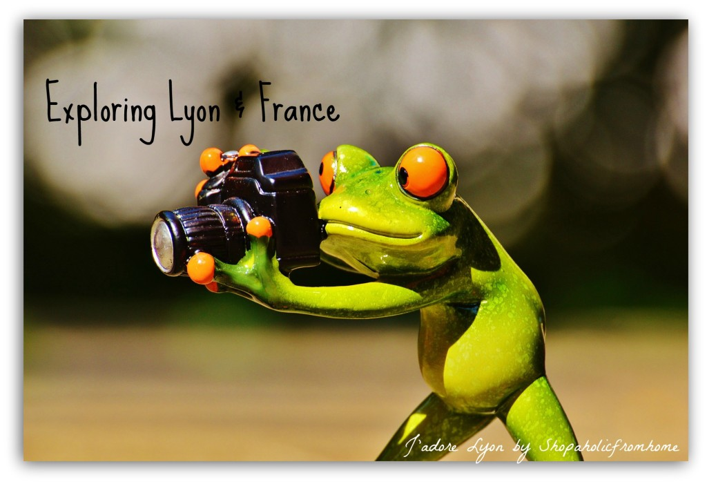 Exploring Lyon and France
