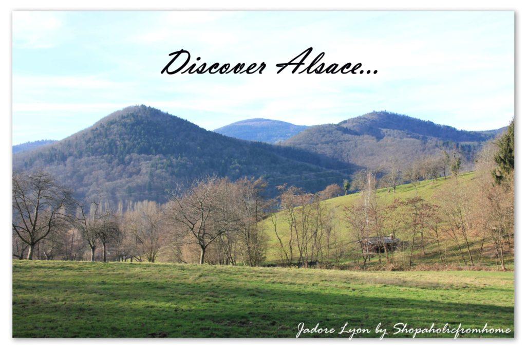 Discover Alsace