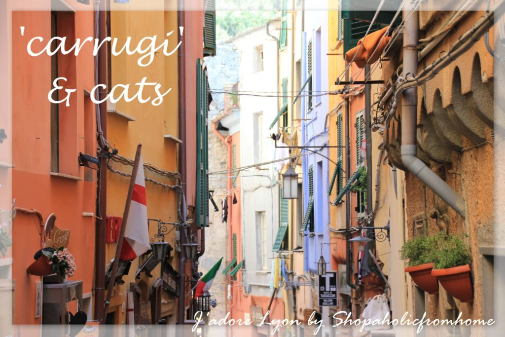 Portovenere - carrugi and cats