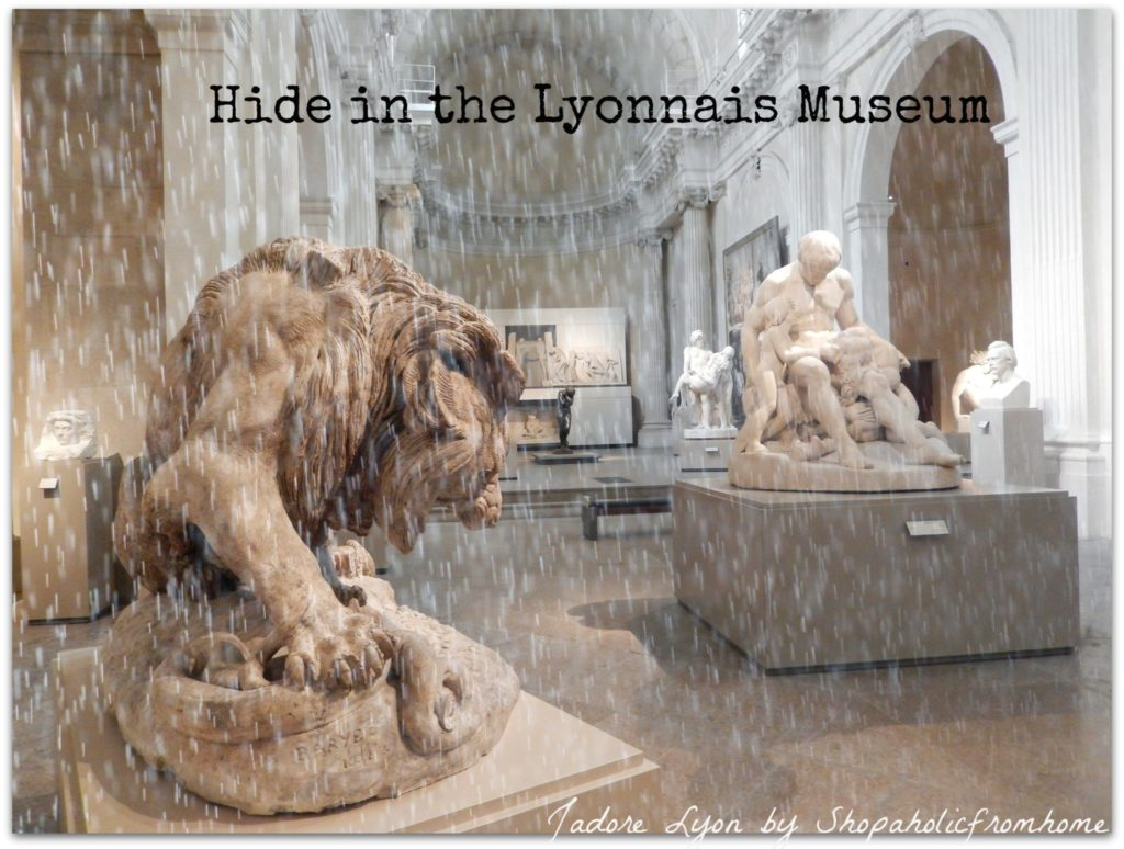 Hide in the Lyoonnais Museum