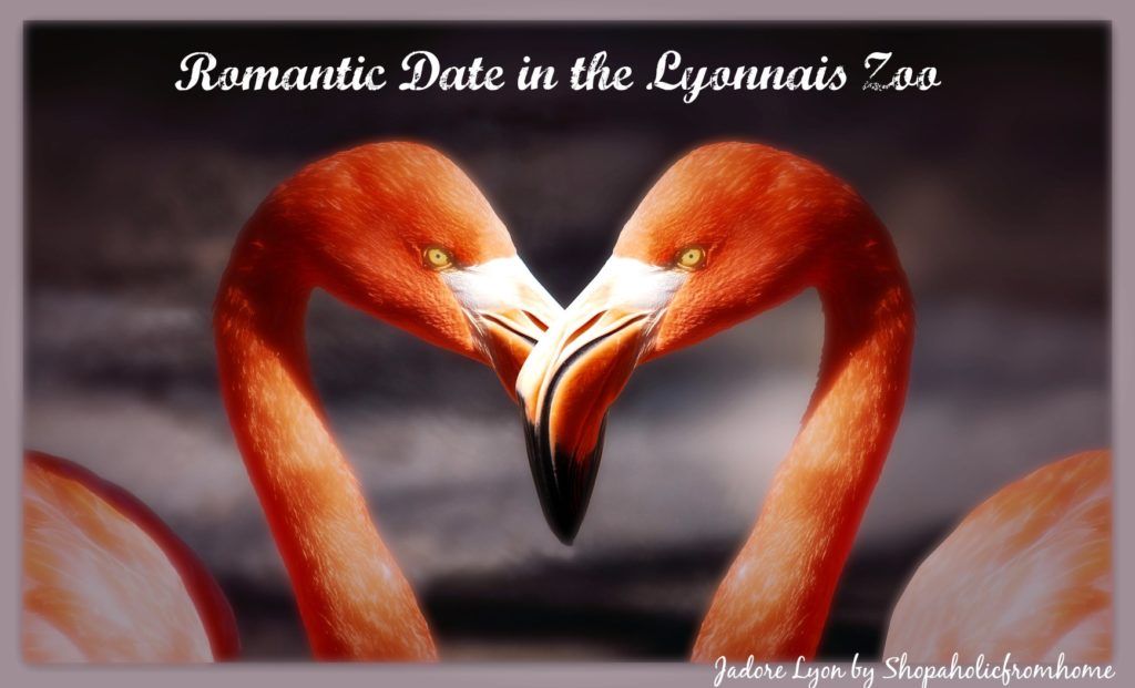 Romantic Date in the Lyonnais Zoo