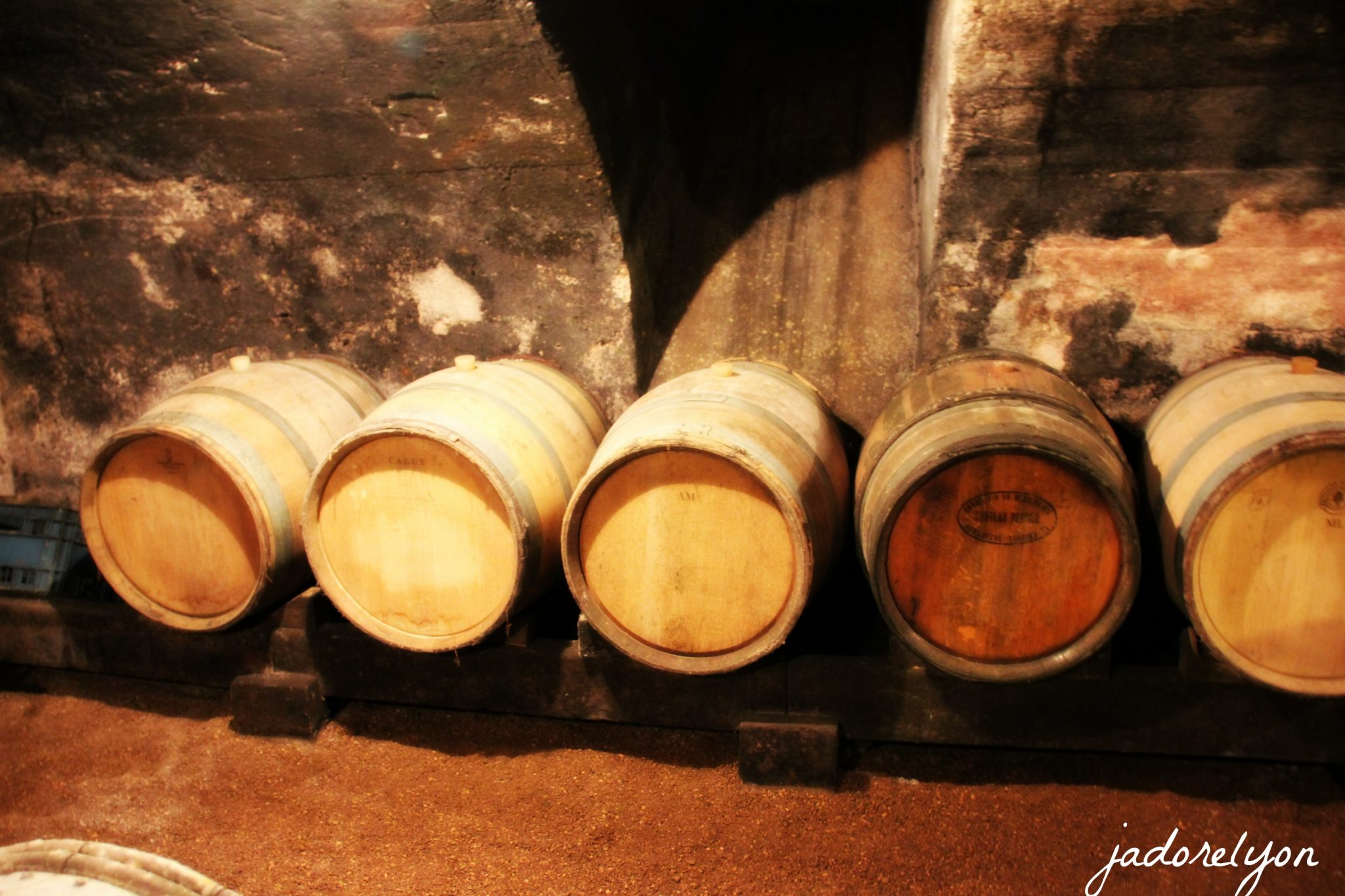 Do the wine discovery by a real old style produce