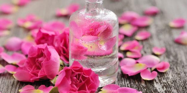 Plantes a Perfume