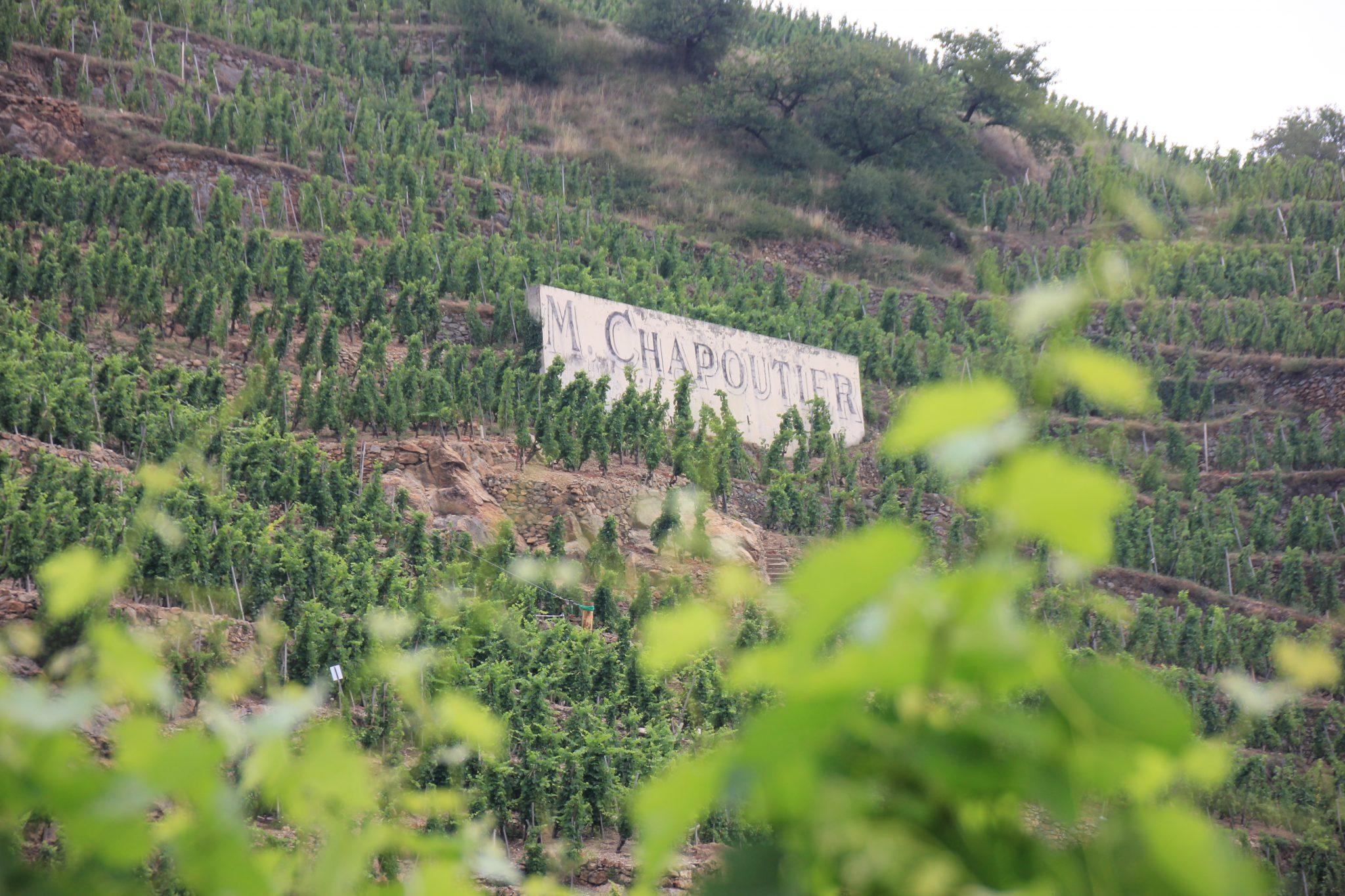 Marche Aux Vins Ampuis Cote Rotie