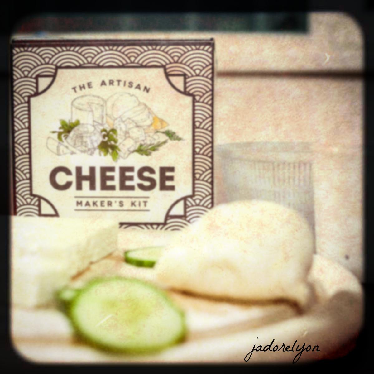 cheese makiing kit