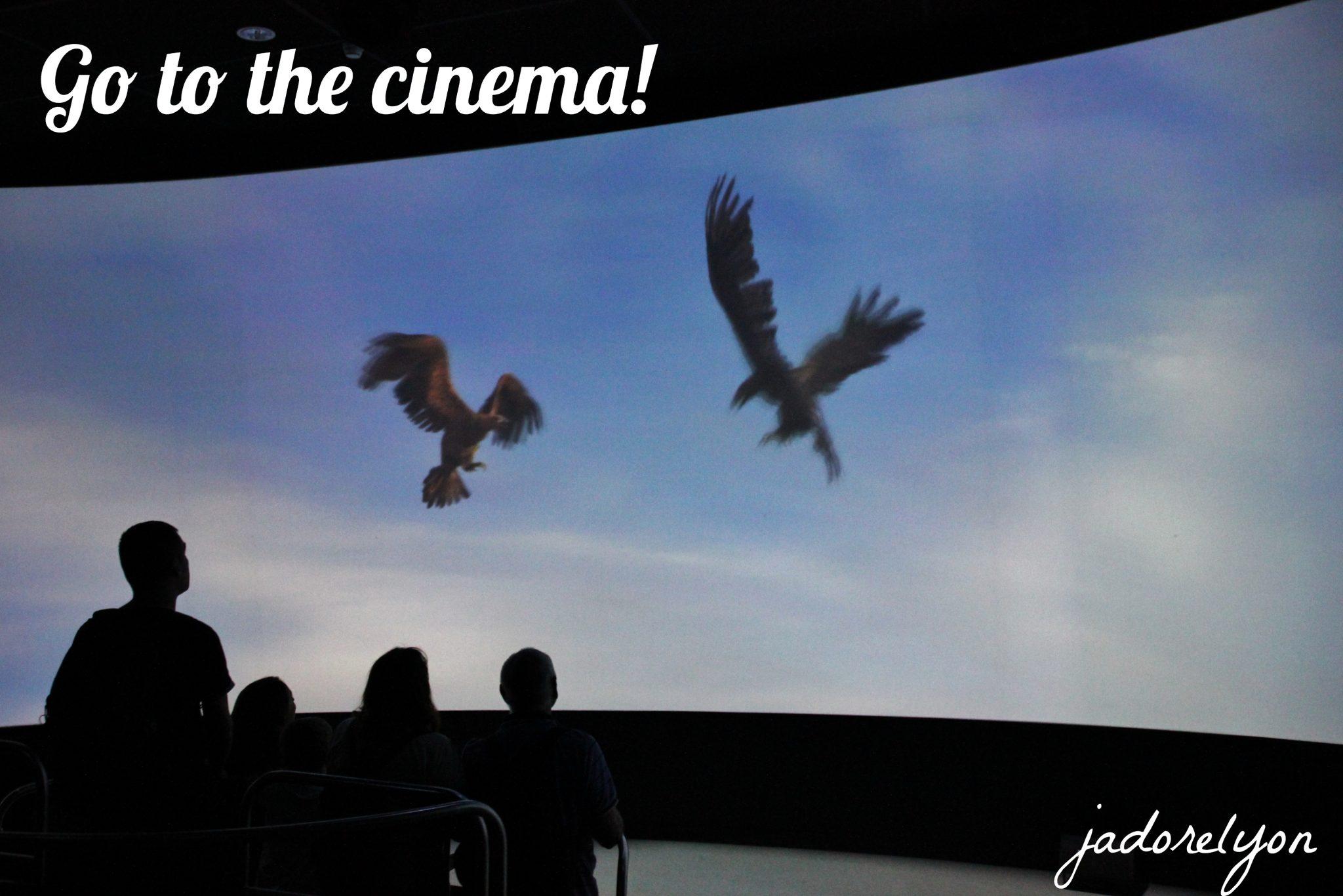 Go to the cinema!
